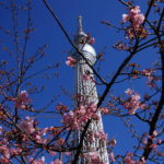 Tokyo Skytree is the tallest broadcasting tower in the world.