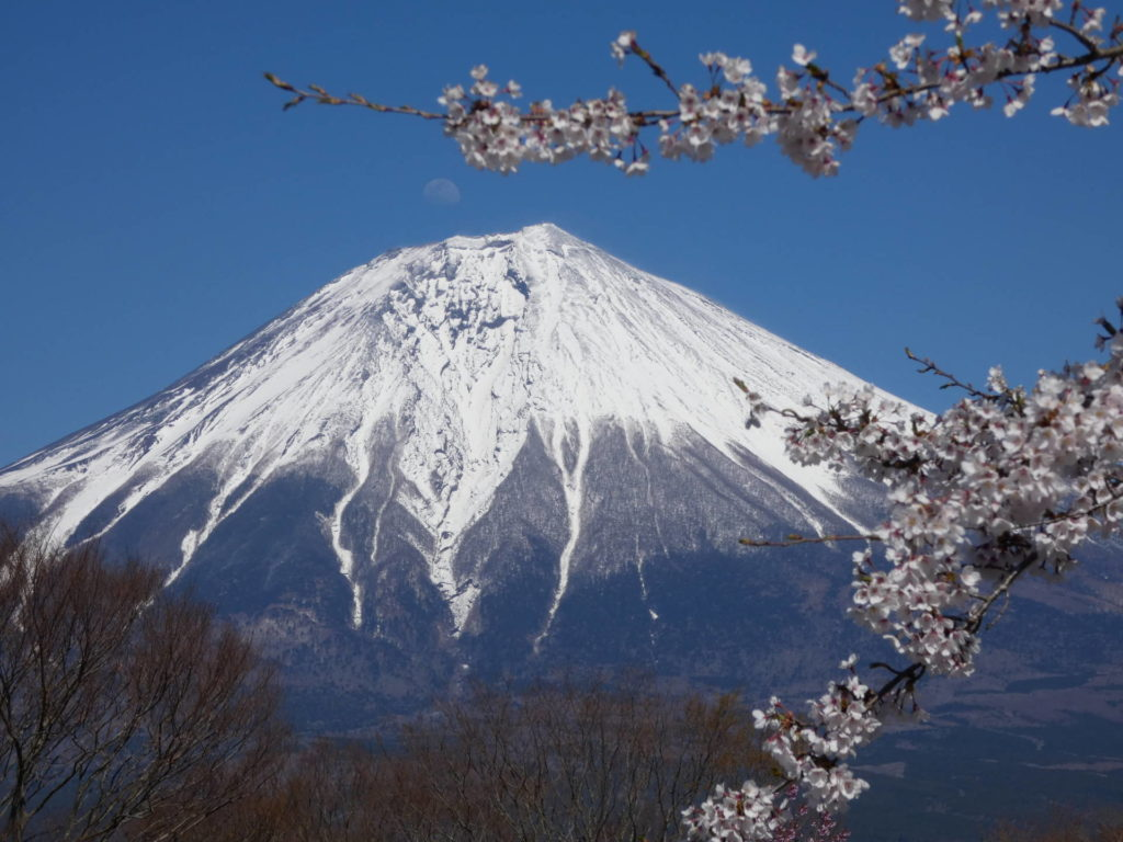 When is the best season to visit Mt. Fuji?